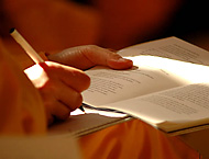 studera