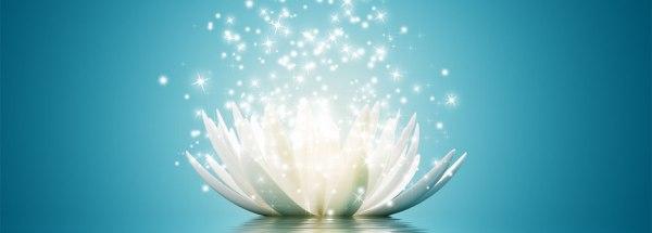 lotus-blue1060x380_Hollywood