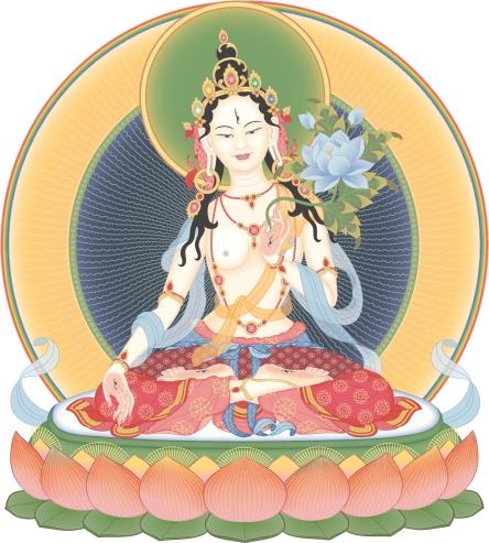 Tara 3