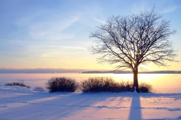 Vinter retreat